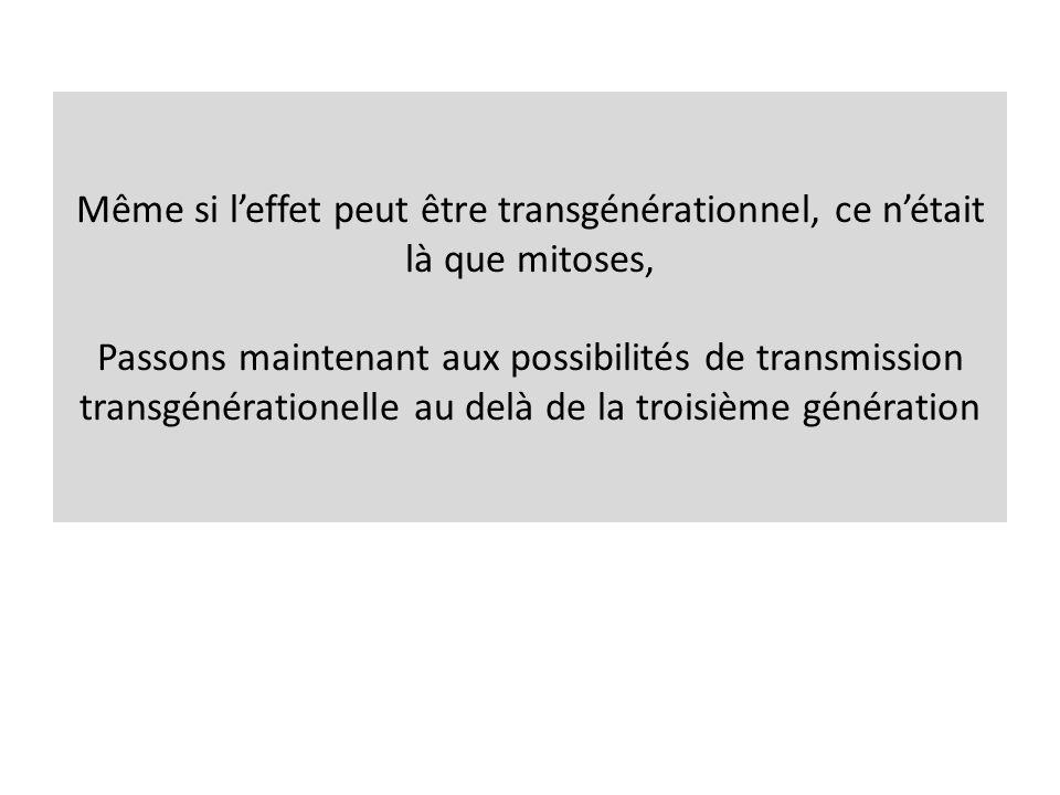 Même si l'effet peut être transgénérationnel, ce n'était là que mitoses, Passons maintenant aux possibilités de transmission transgénérationelle au delà de la troisième génération
