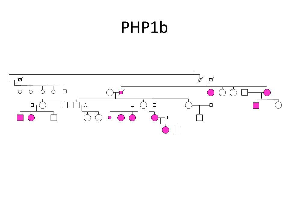PHP1b