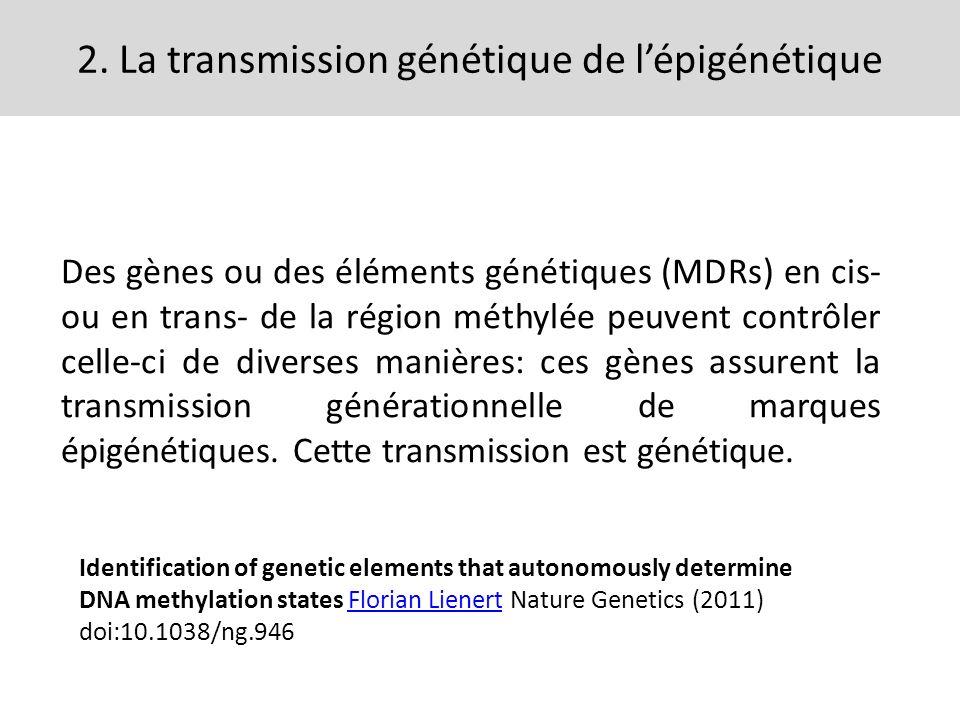 2. La transmission génétique de l'épigénétique