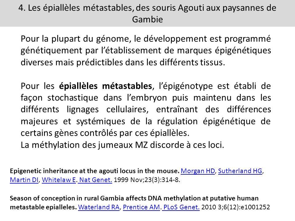 La méthylation des jumeaux MZ discorde à ces loci.