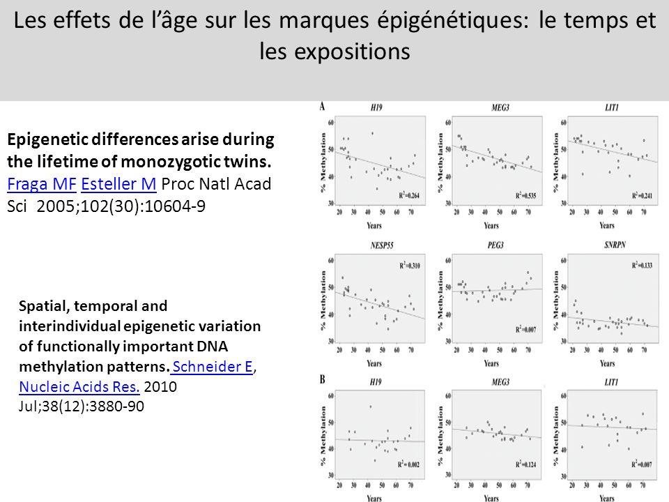 Les effets de l'âge sur les marques épigénétiques: le temps et les expositions