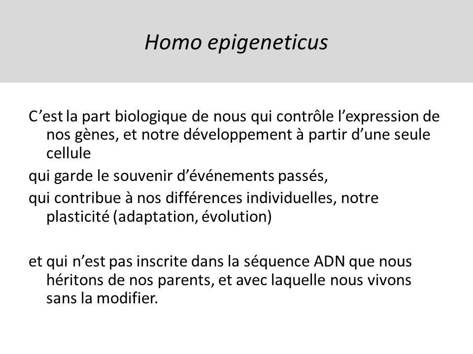 Homo epigeneticus