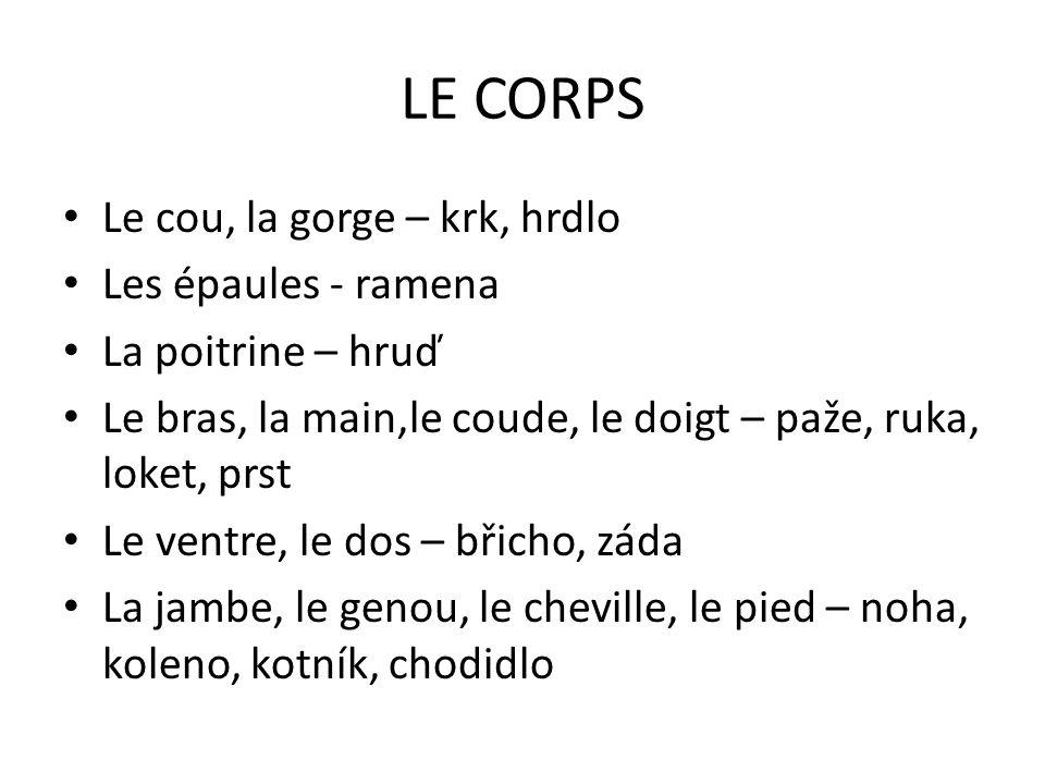 LE CORPS Le cou, la gorge – krk, hrdlo Les épaules - ramena