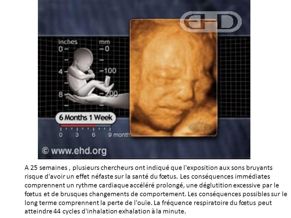 A 25 semaines , plusieurs chercheurs ont indiqué que l exposition aux sons bruyants risque d avoir un effet néfaste sur la santé du fœtus.