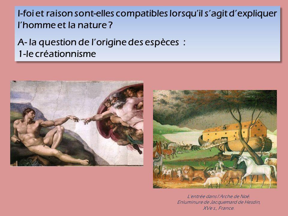 A- la question de l'origine des espèces : 1-le créationnisme