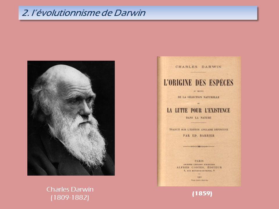 2. l'évolutionnisme de Darwin