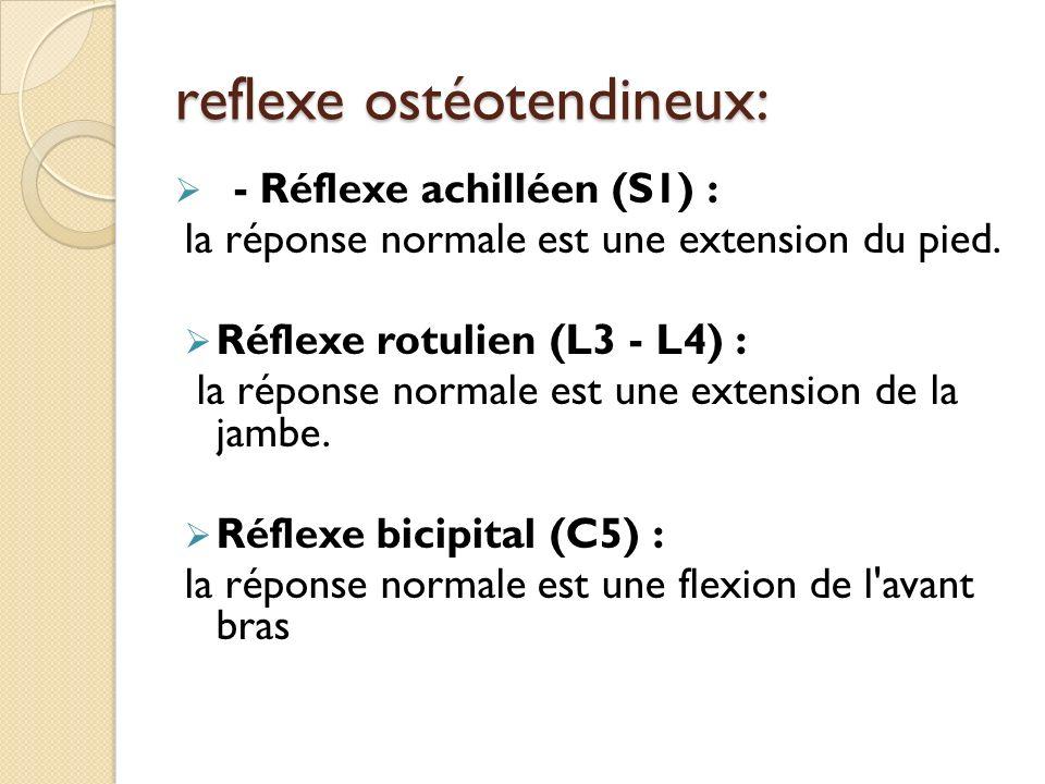 reflexe ostéotendineux: