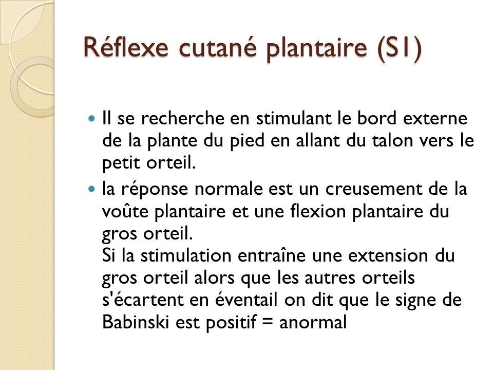 Réflexe cutané plantaire (S1)