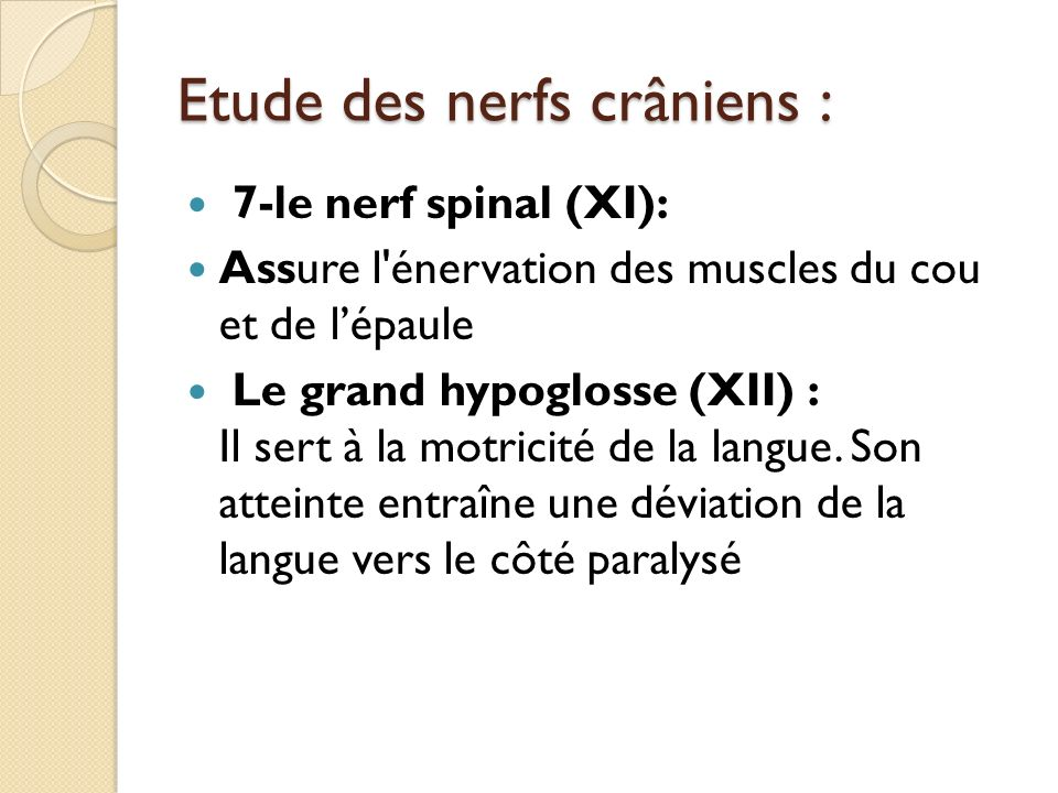 Etude des nerfs crâniens :
