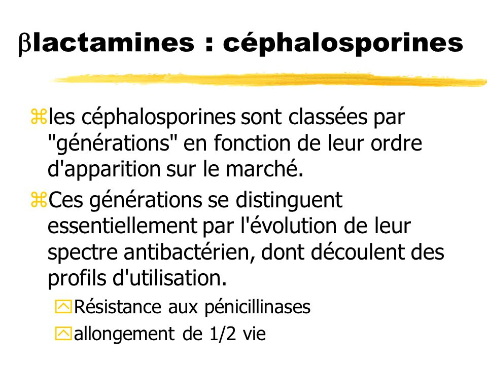 lactamines : céphalosporines