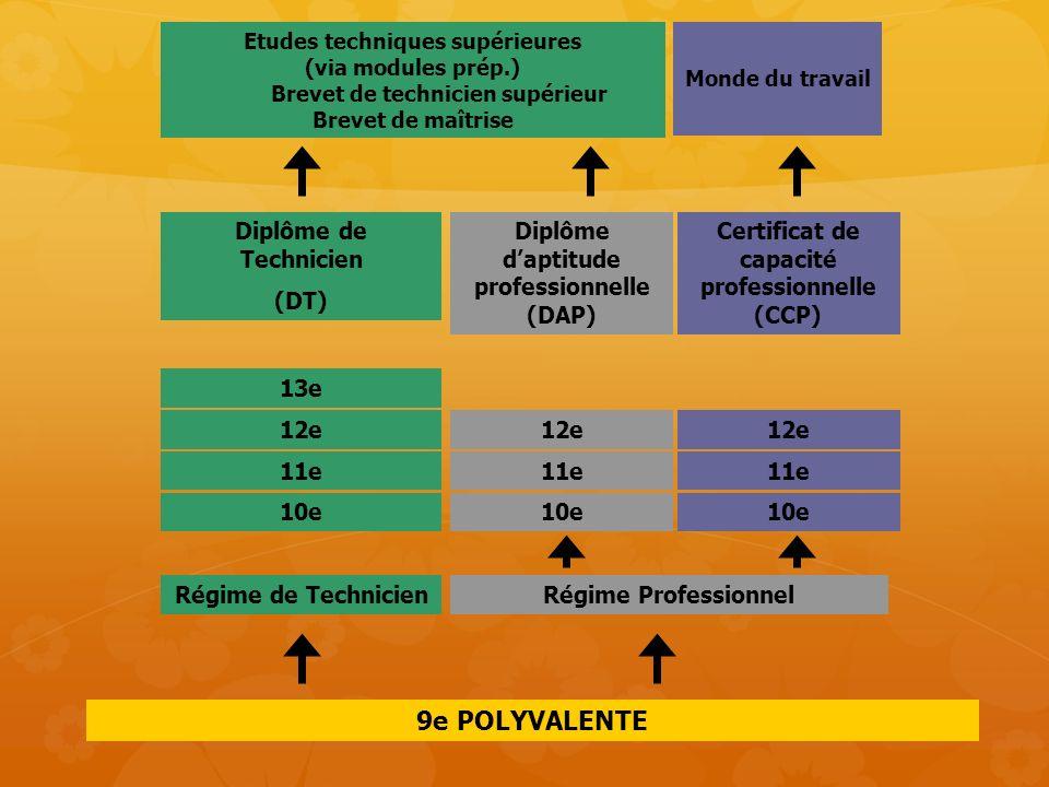 9e POLYVALENTE 12e 11e 10e 13e Diplôme de Technicien (DT)