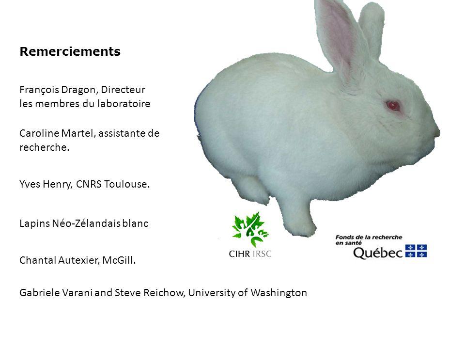 Remerciements François Dragon, Directeur. les membres du laboratoire. Caroline Martel, assistante de recherche.