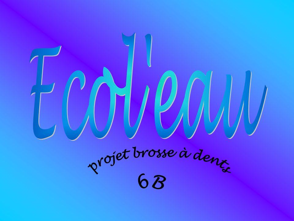 Ecol eau projet brosse à dents 6B