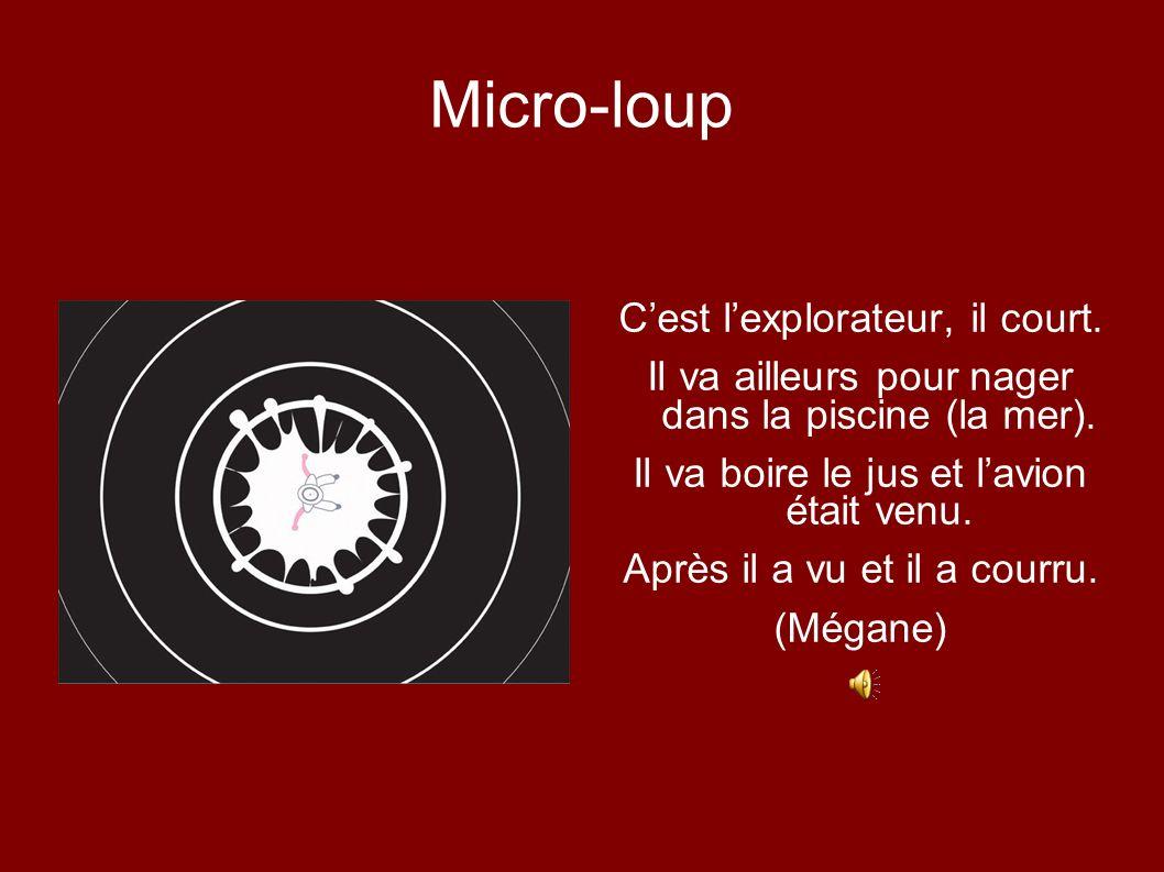 Micro-loup C'est l'explorateur, il court.