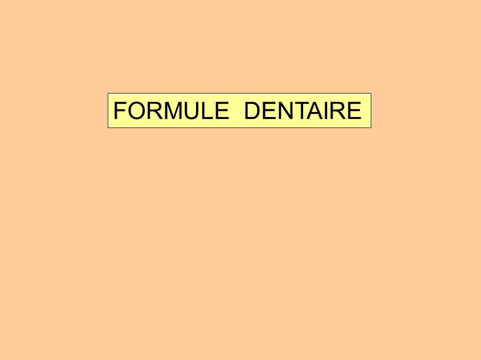FORMULE DENTAIRE