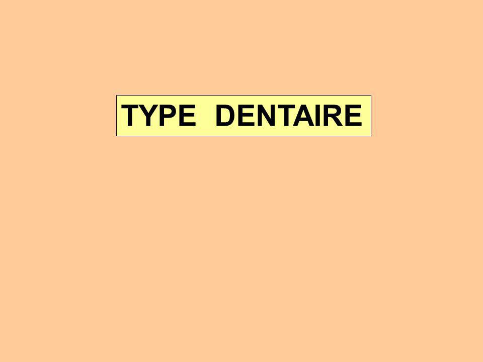 TYPE DENTAIRE