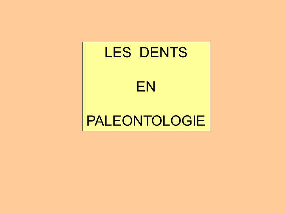 LES DENTS EN PALEONTOLOGIE