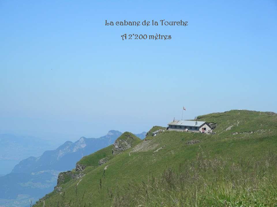 La cabane de la Tourche A 2'200 mètres