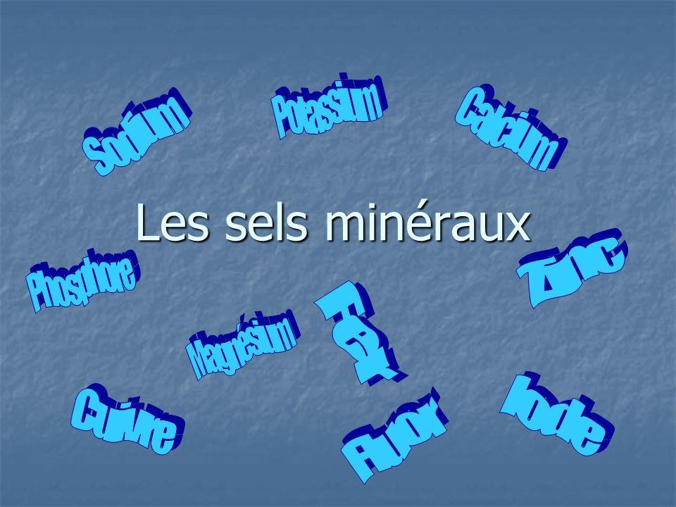 Les sels minéraux Potassium Calcium Sodium Zinc Phosphore Magnésium