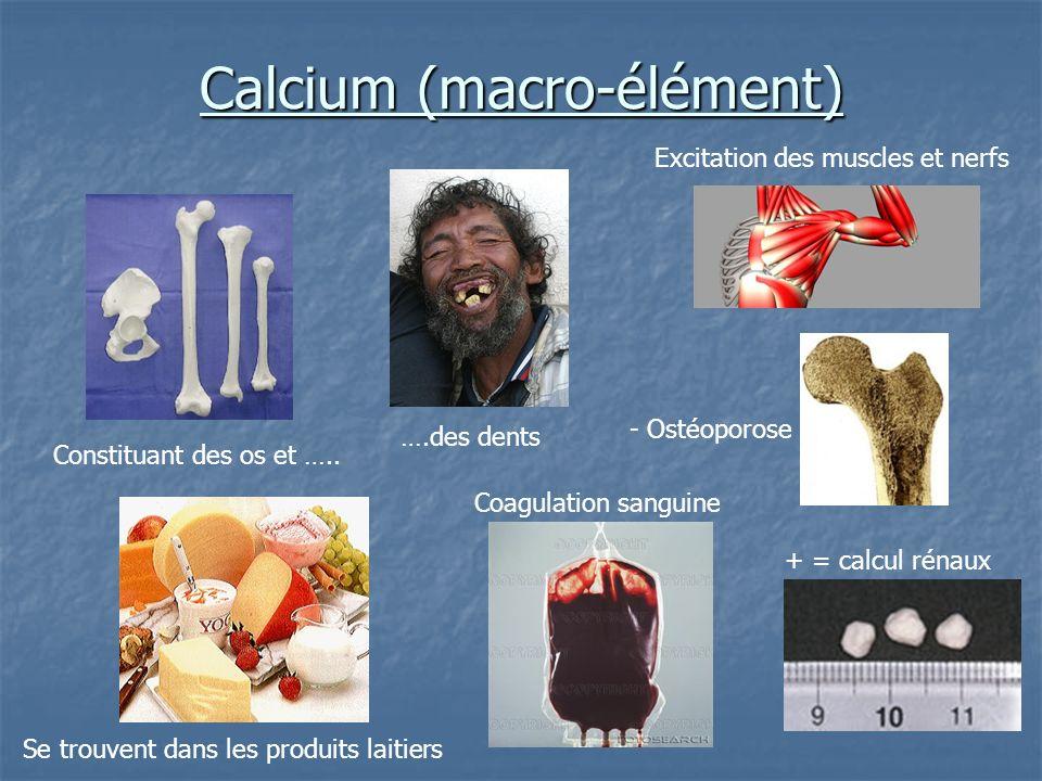 Calcium (macro-élément)