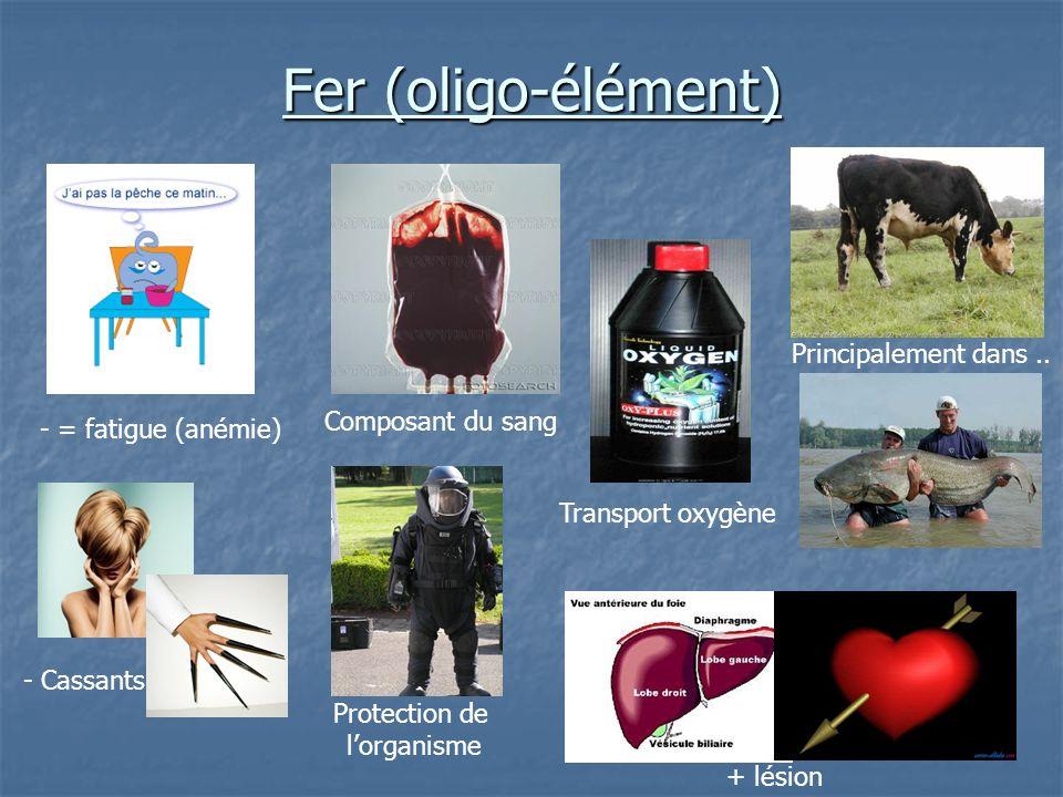 Fer (oligo-élément) Principalement dans .. Composant du sang
