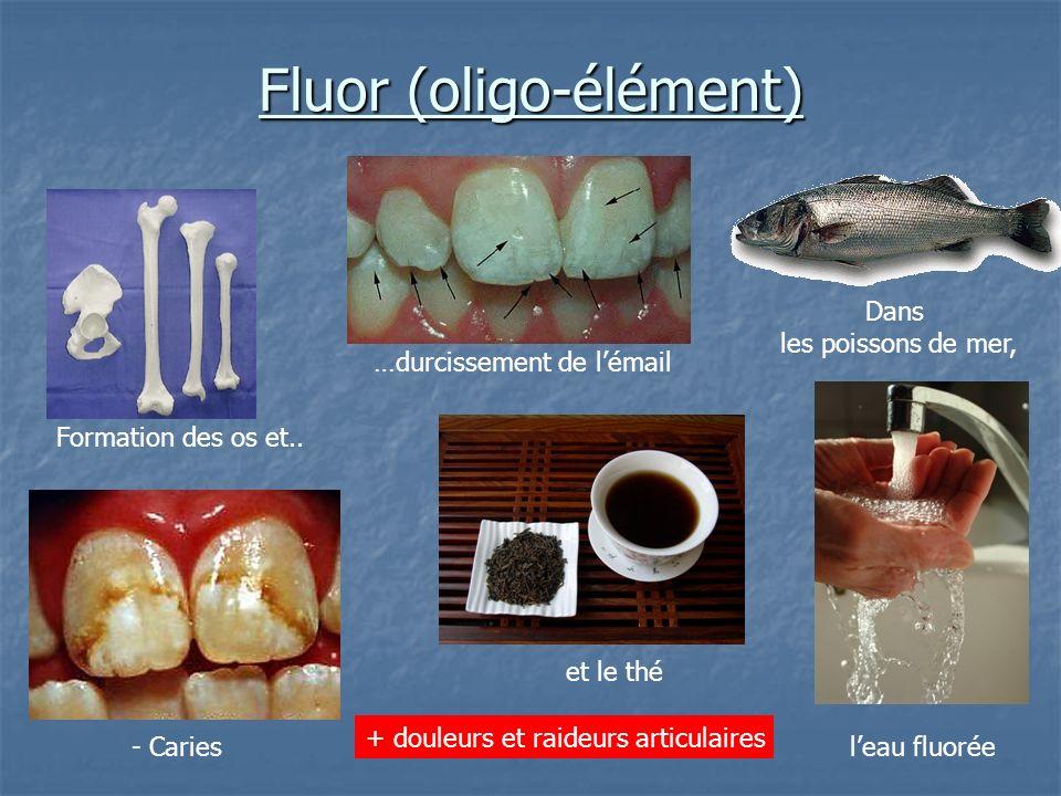Fluor (oligo-élément)