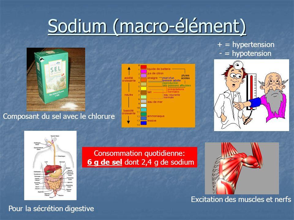 Sodium (macro-élément)