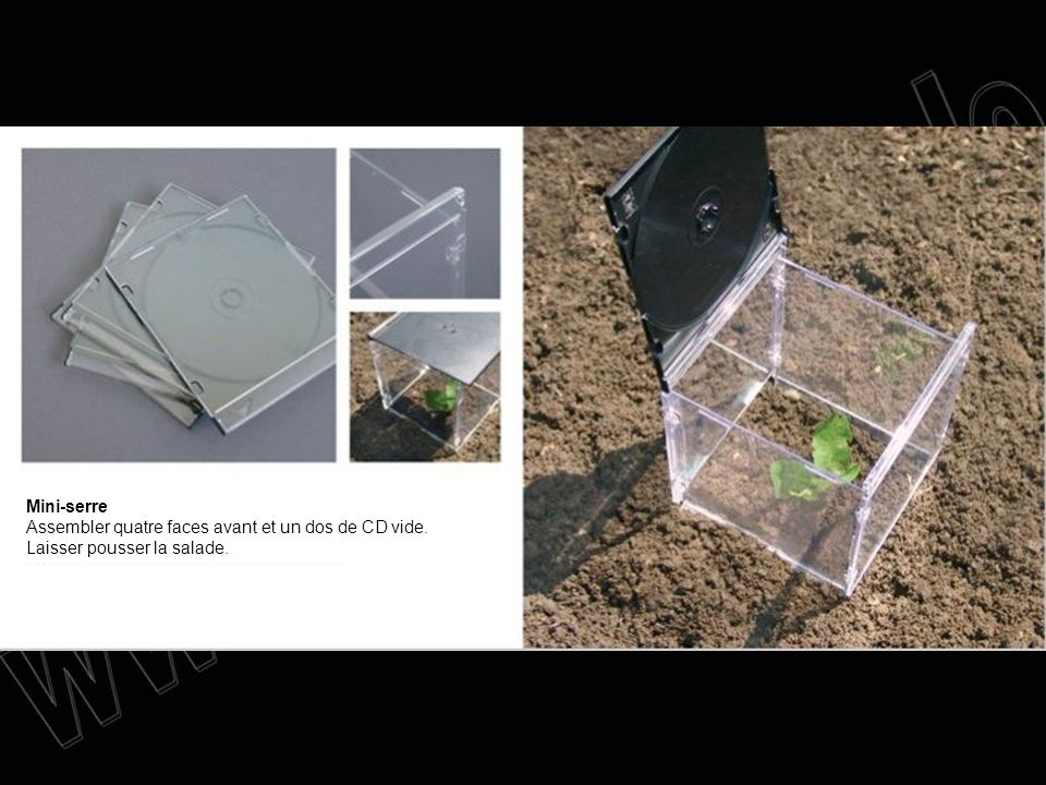 Mini-serre Assembler quatre faces avant et un dos de CD vide