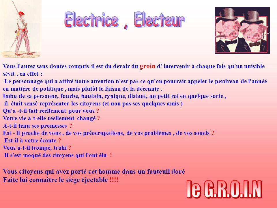 le G.R.O.I.N Electrice , Electeur