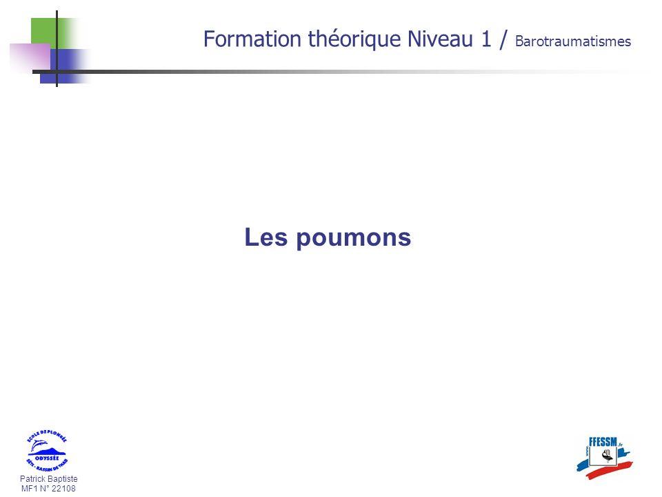 Les poumons Formation théorique Niveau 1 / Barotraumatismes * 16/07/96
