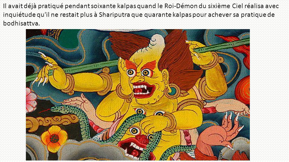 Il avait déjà pratiqué pendant soixante kalpas quand le Roi-Démon du sixième Ciel réalisa avec inquiétude qu il ne restait plus à Shariputra que quarante kalpas pour achever sa pratique de bodhisattva.