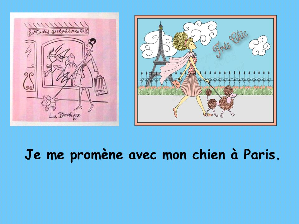 Je me promène avec mon chien à Paris.