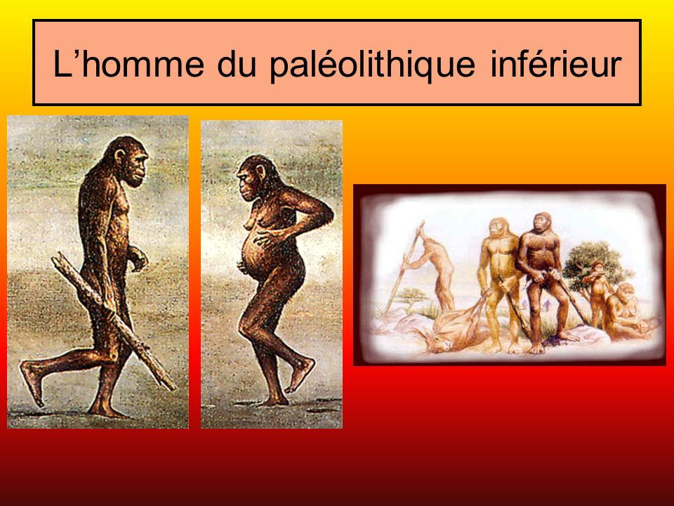 L'homme du paléolithique inférieur