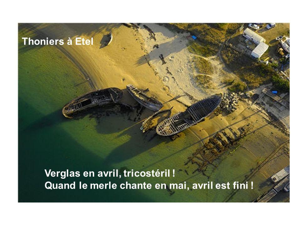 Thoniers à Etel Verglas en avril, tricostéril ! Quand le merle chante en mai, avril est fini !