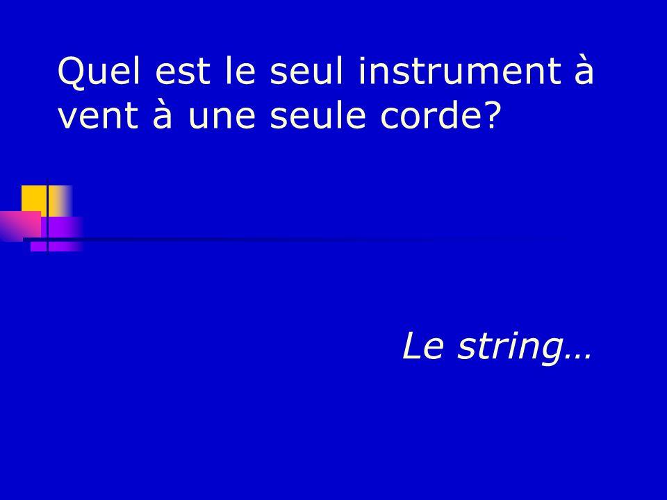 Quel est le seul instrument à vent à une seule corde