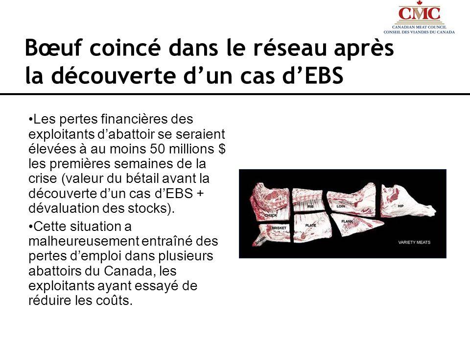 Bœuf coincé dans le réseau après la découverte d'un cas d'EBS