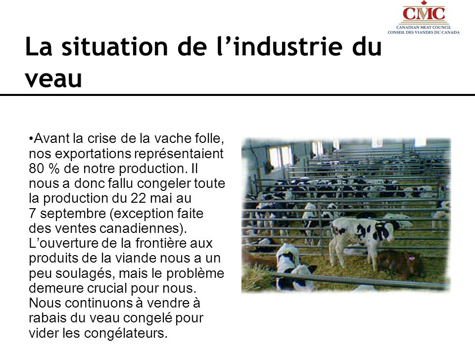 La situation de l'industrie du veau