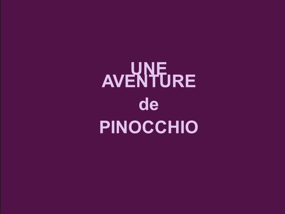 UNE AVENTURE de PINOCCHIO