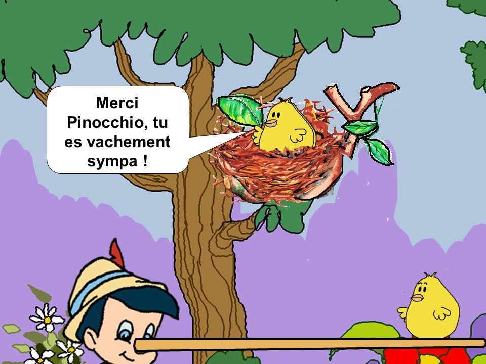 Merci Pinocchio, tu es vachement sympa !