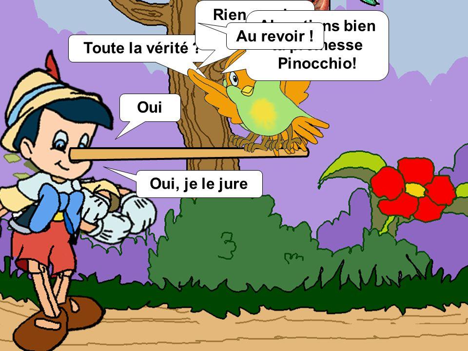 Alors tiens bien ta promesse Pinocchio!