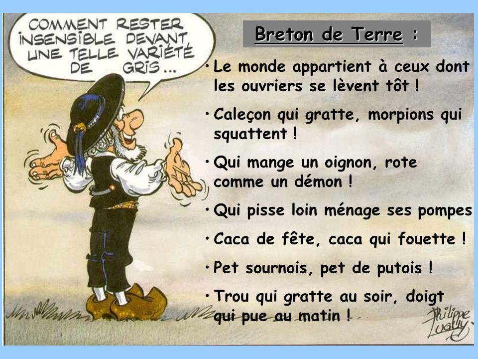 Breton de Terre : Le monde appartient à ceux dont les ouvriers se lèvent tôt ! Caleçon qui gratte, morpions qui squattent !