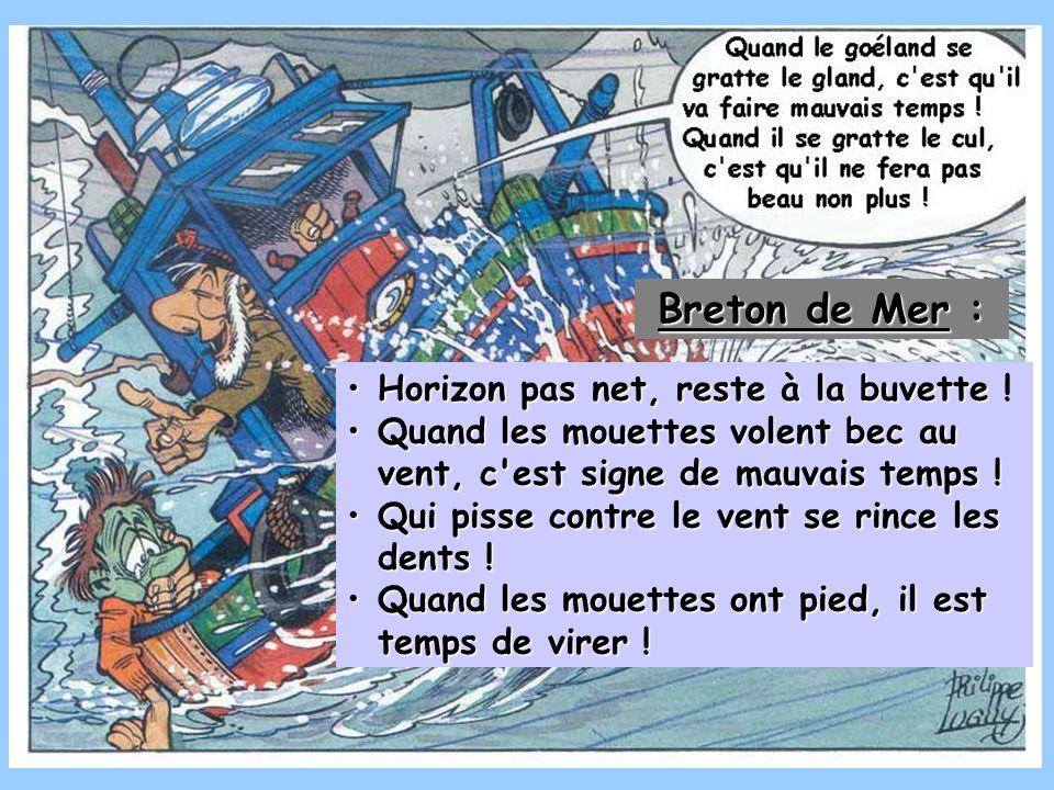 Breton de Mer : Horizon pas net, reste à la buvette !
