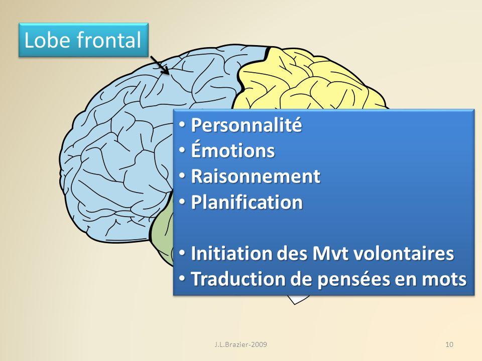 Lobe frontal Personnalité Émotions Raisonnement Planification