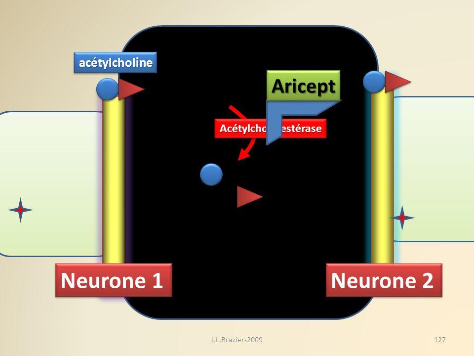 Neurone 1 Neurone 2 Aricept acétylcholine Acétylcholinestérase