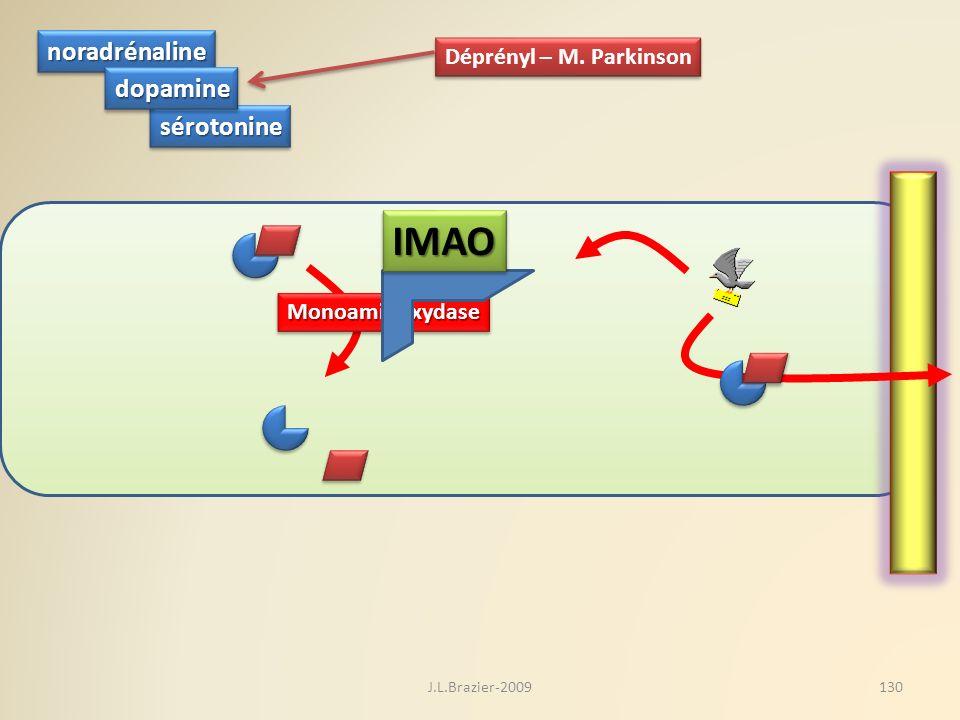 IMAO noradrénaline dopamine sérotonine Déprényl – M. Parkinson