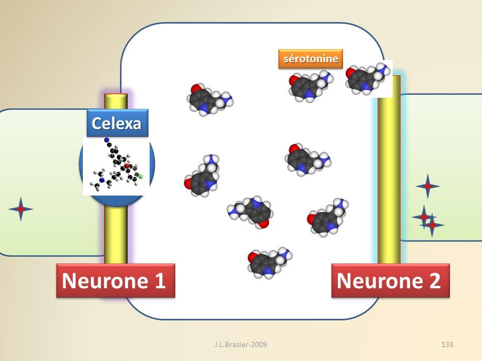 sérotonine Celexa Neurone 1 Neurone 2 J.L.Brazier-2009