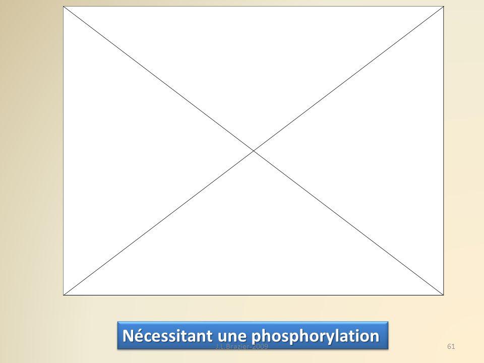 Nécessitant une phosphorylation