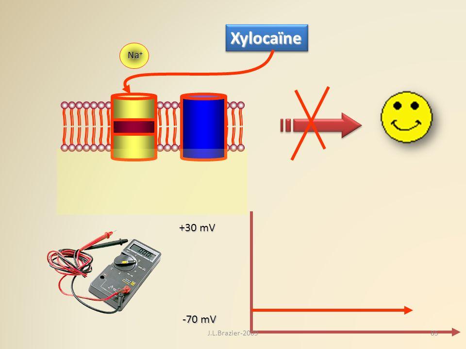 Xylocaïne Na+ K+ Na+ +30 mV -70 mV J.L.Brazier-2009