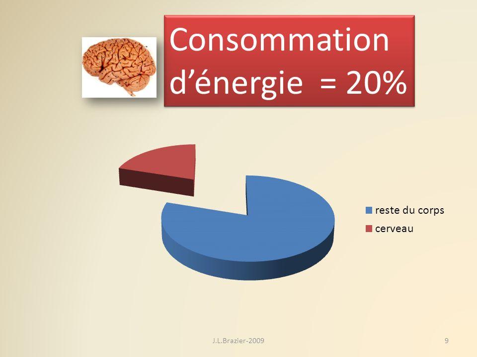 Consommation d'énergie = 20% J.L.Brazier-2009