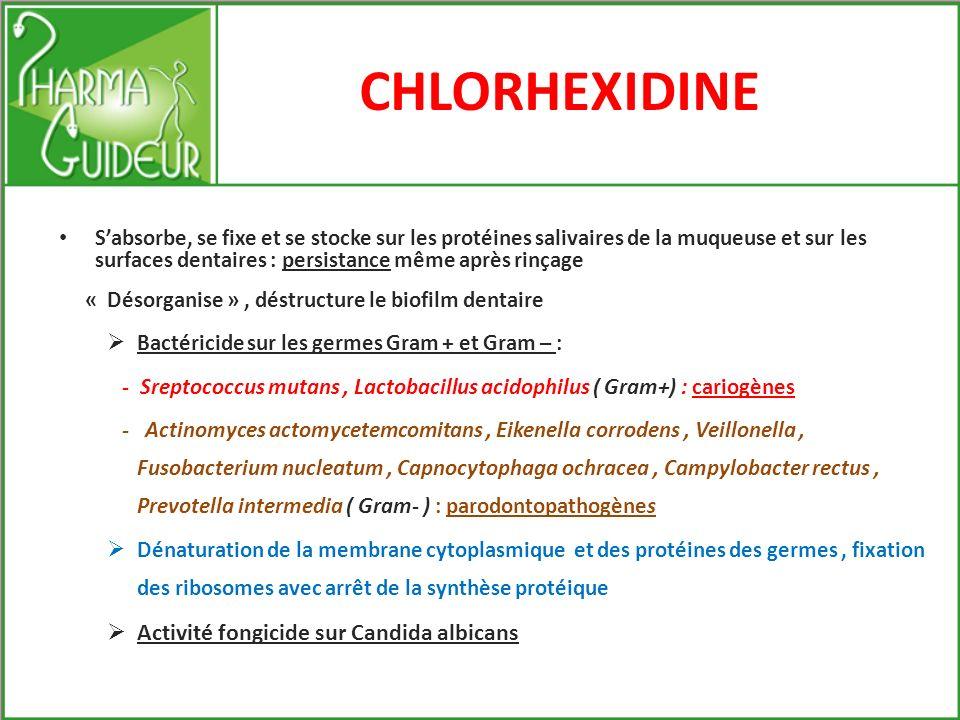 CHLORHEXIDINE Activité fongicide sur Candida albicans